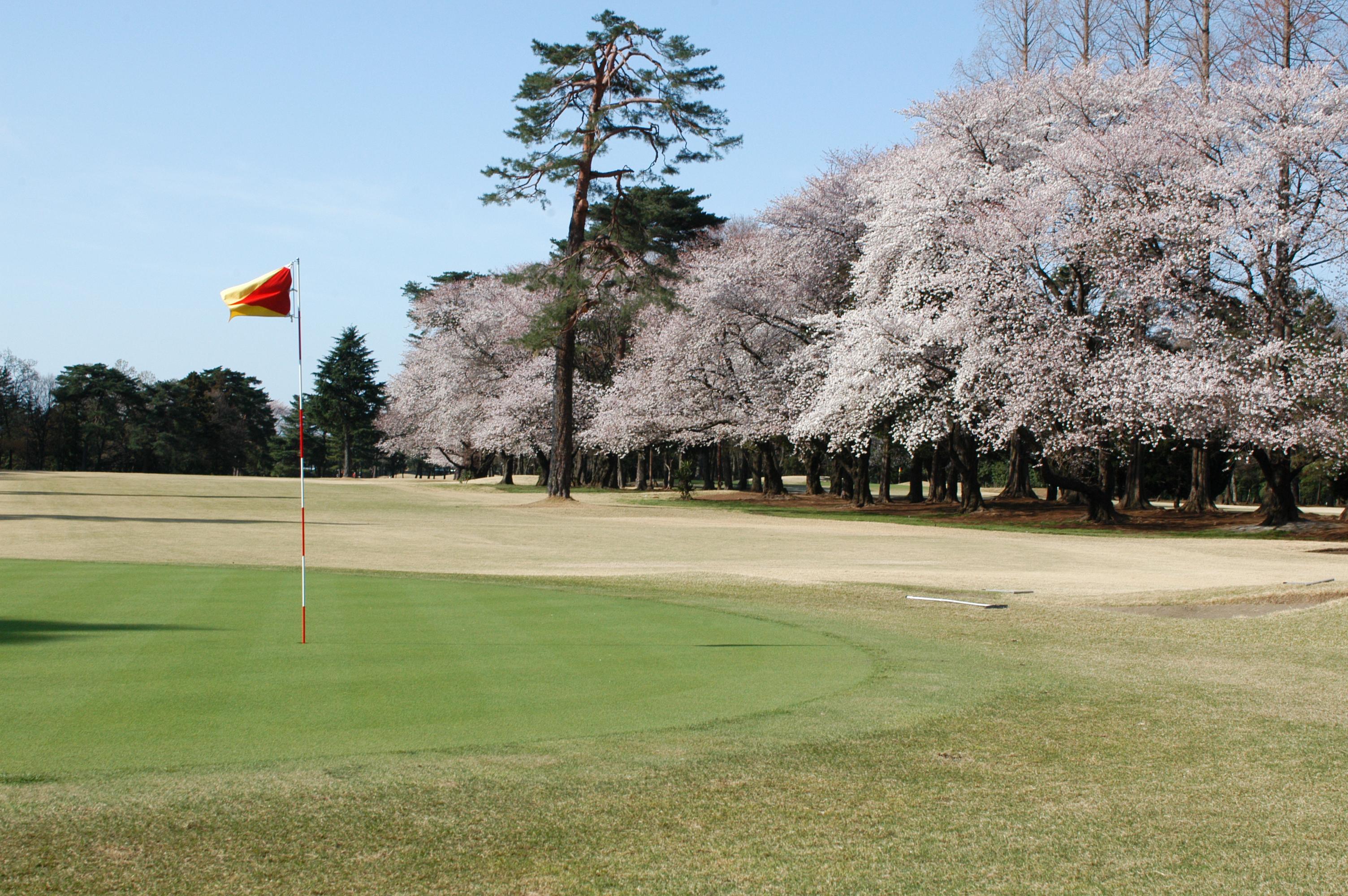 大宮ゴルフコース  width=