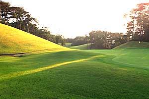 【岡山県】パインツリーゴルフクラブ