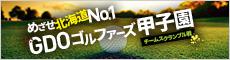 ゴルファーズ甲子園